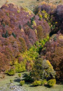 Pirineo Oct-2018-v (23)